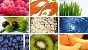 Fungsi Nutrisi dan Pengertiannya