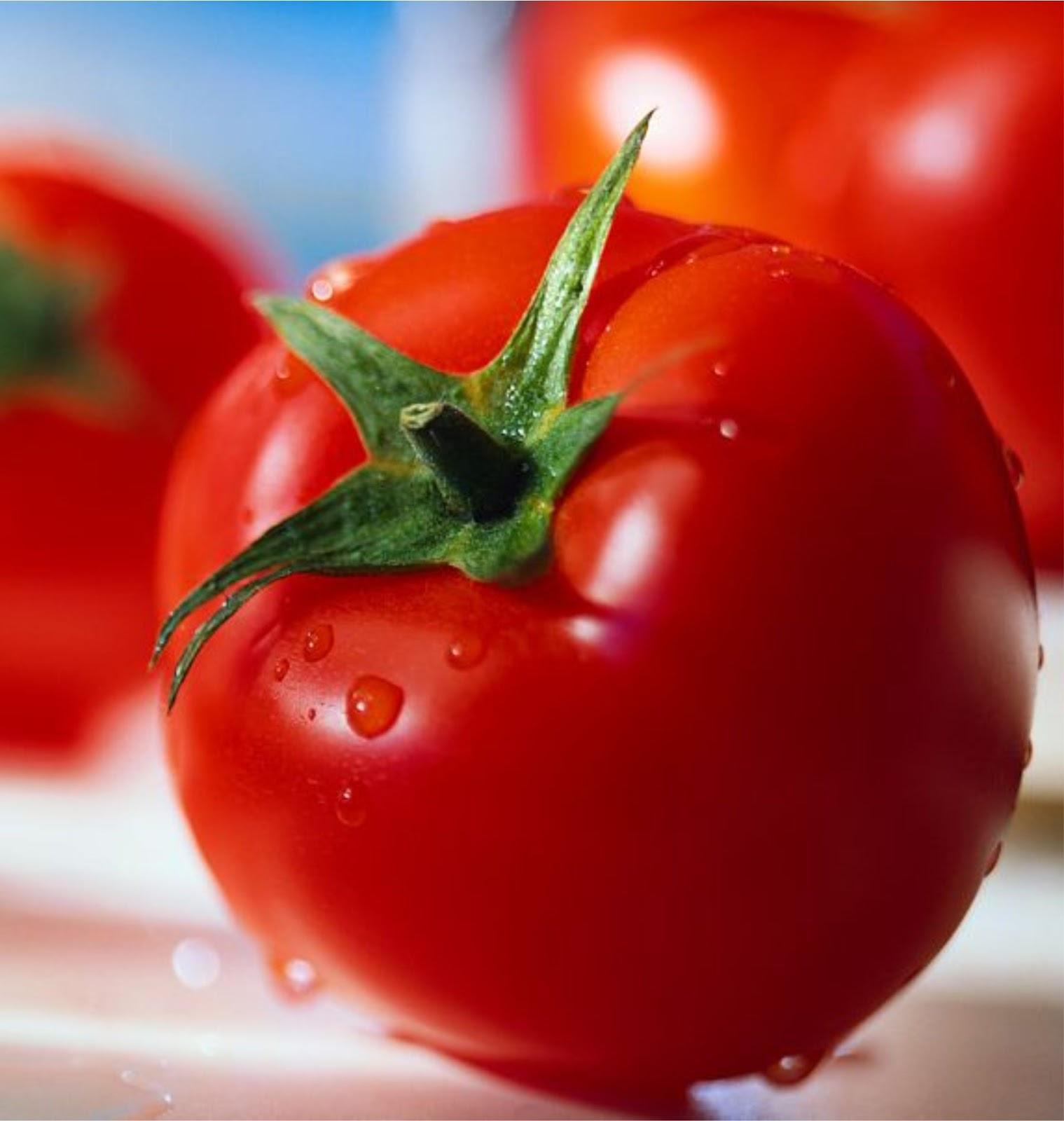 Search Results For Cara Menghilangkan Jerawat Dengan: Fungsi Dan Manfaat Buah Tomat